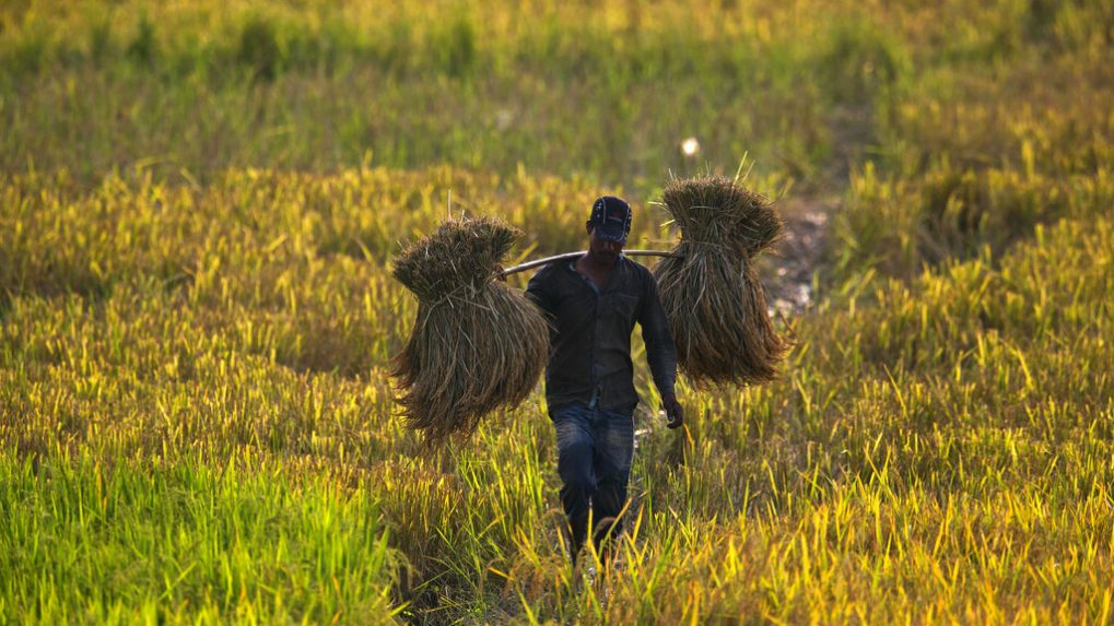 India vs Bharat: Why the present rural-urban market divide is flawed to the core